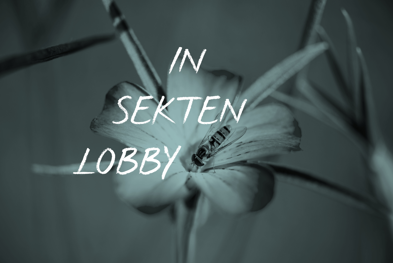 Eine Lobby Für Insekten: Tag Der Insekten 2019, Insektenlobby, Blume, Biene, Tina Teucher