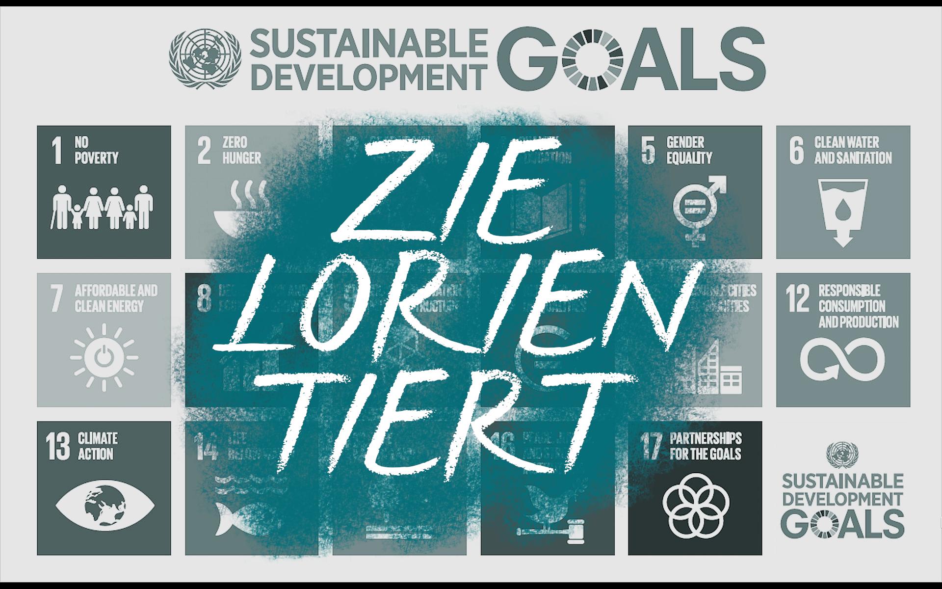 Wozu Taugen Die UN Ziele Der Wirtschaft? (SDGs)