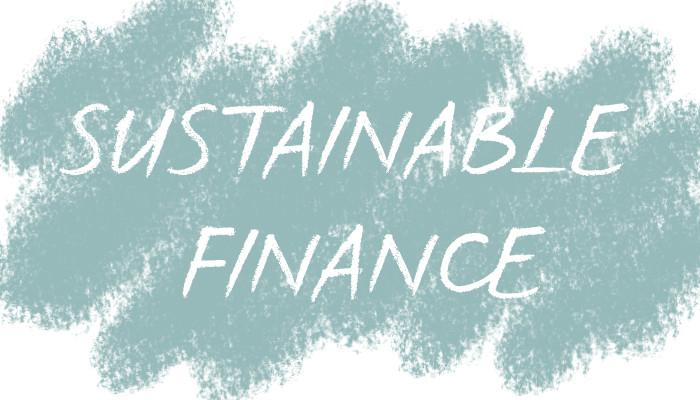 online event expo 9.3.21 Expertentalk: Sustainable Finance, Judith Bogner, Leonhard Zintl, Giovanni Gay, Tina Teucher, Text: Sustainable Finance
