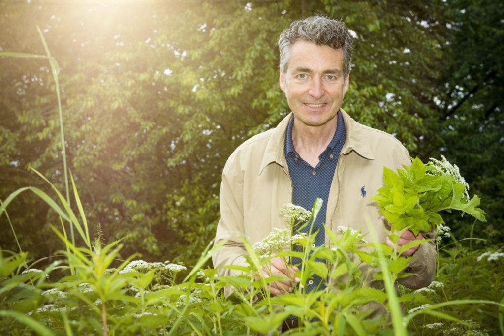 Dr. Markus Strauß Pflanzen Wildpflanzen Heilpflanzen